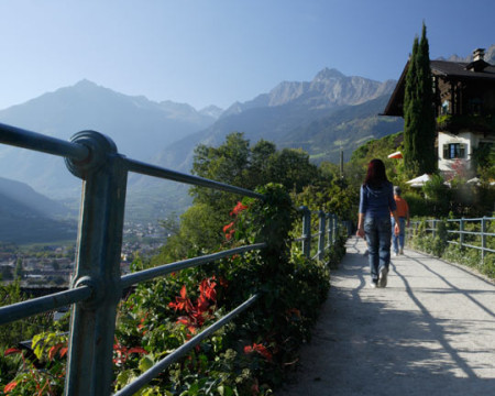 Dorf Tirol > St. Peter > Tappeinerweg